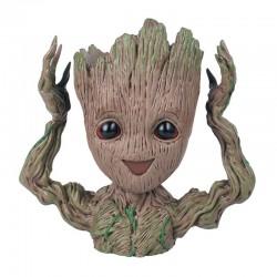 Groot Květináč IV